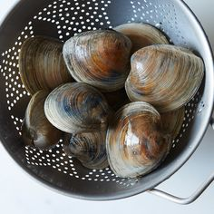 How to Classify and Cook With Clams