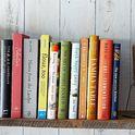 A528112a f8b6 4465 967f c78045070d85  piglet books