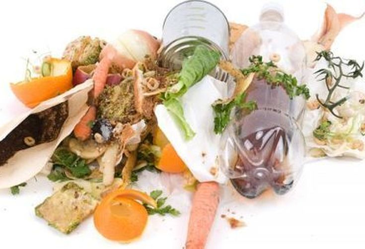 Fe9b5983-9535-4525-ae6c-793a4d62a5b1--reduce-food-waste