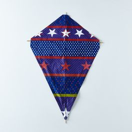 [OLD] Silkscreened and Bamboo American Kite