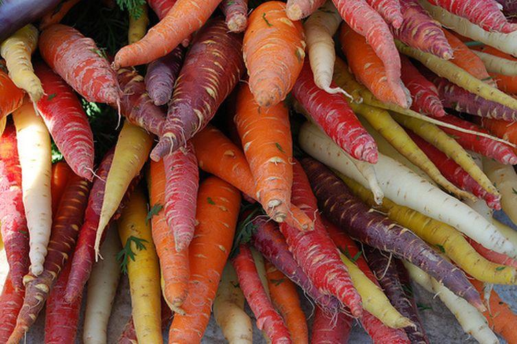 Algerian Carrot Slaw