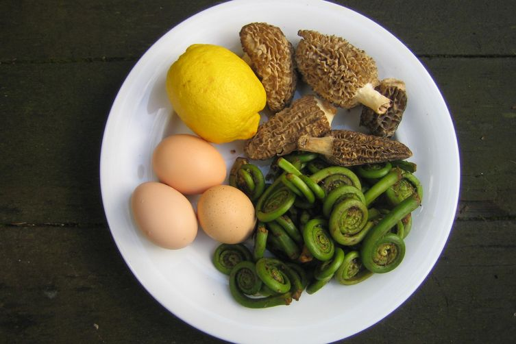 Fiddlehead and Morel Eggs Benedict