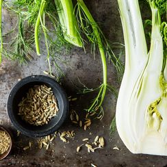 We're As Obsessed with Fennel As Oprah