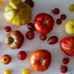 How to Deal With Fresh Tomatoes