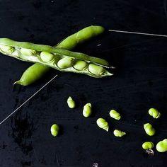 Down & Dirty: Fava Beans