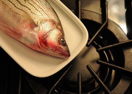 Your Best Summer Fish Recipe