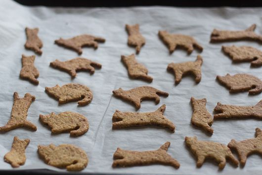 """Cat"" cookies with sesame and olive oil"