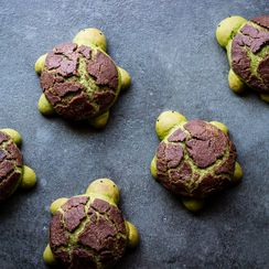 MATCHA MILK BREAD TURTLE ROLLS with CHOCOLATE DUTCH CRUNCH