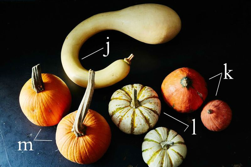 Edible Winter Squash