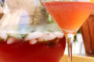 9d604e72 490a 4bdf a8c5 2fae32bc3a09  pitcher and martini