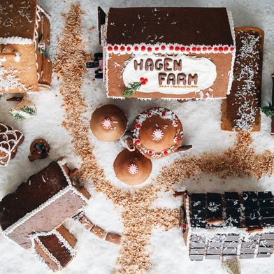 How to Build a Gingerbread Farm, Part 1
