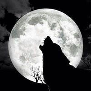 Makenna Moon