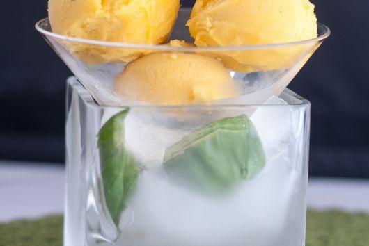 Mango Lime Mojito Sorbet