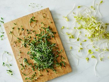 Don't Confuse Your Shoots And Sprouts—Here's How They're Different