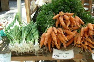 Fac921bc 6e37 4a31 b90c bcb0f95b1cb9  carrots