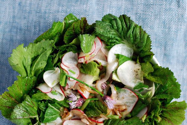 Turnip, Radish and Bitter Green Salad
