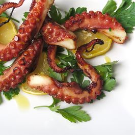 21651141-4139-4342-86a5-4063ae1e210b.grilled_octopus2