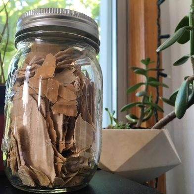 How To Preserve Your Sourdough Starter for Months—Sans Freezer