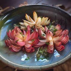 Roasted Lotus Flower Onions