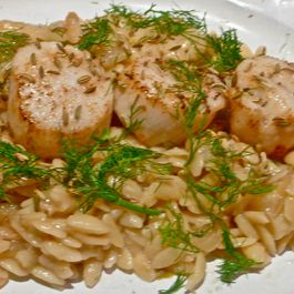 FENNEL AND ORZO WITH DAYBOAT SCALLOPS