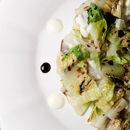 Grilled Romaine with Black and White Sauces