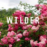 A Wilder Life