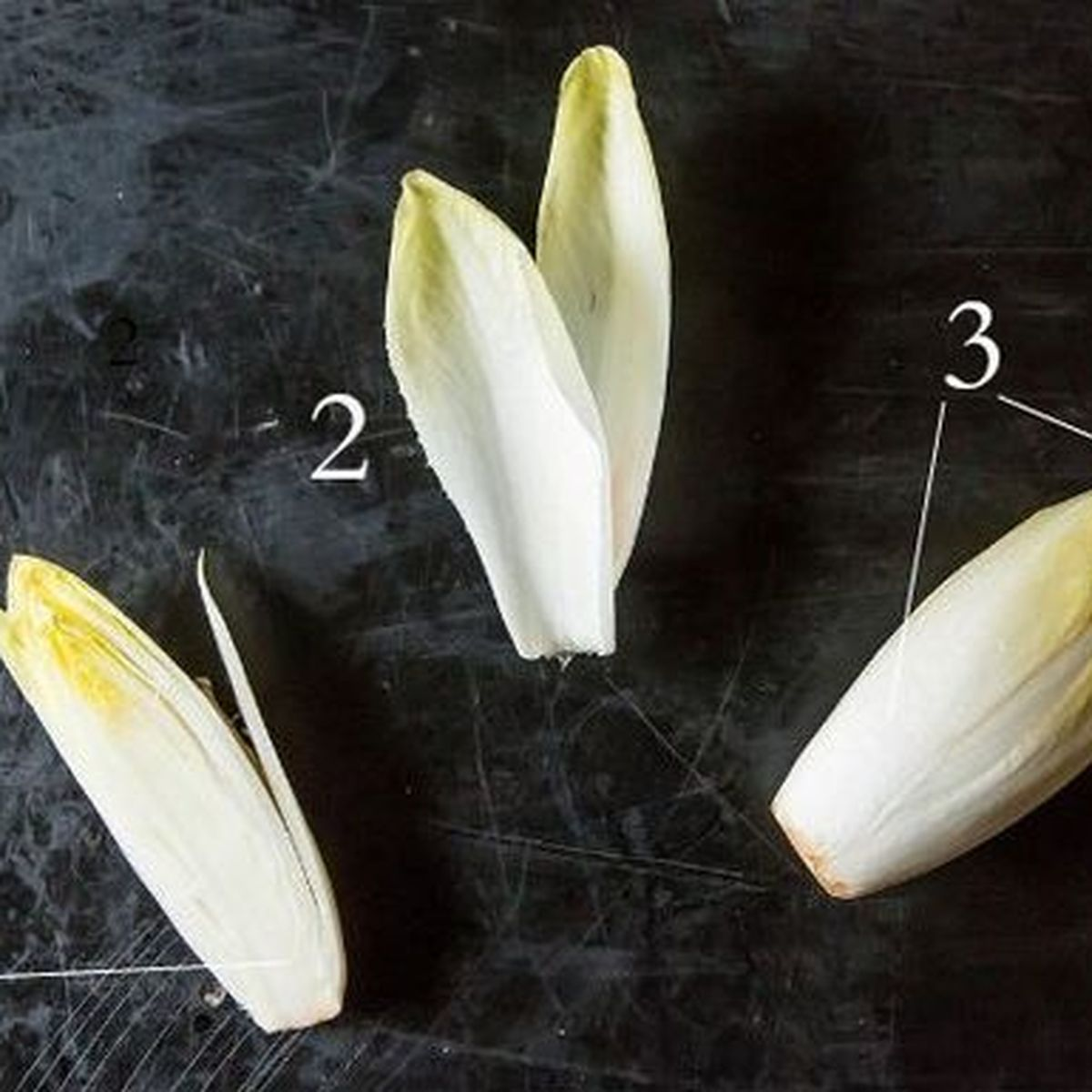 Where To Buy Endive Seeds Can Be Fun For Everyone
