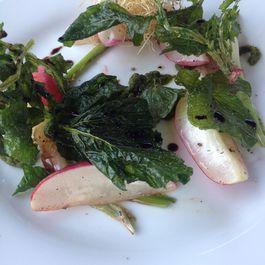 7b6d66ad 9135 4978 94b9 f38d0d4eb3d7  fried root greens with radishes