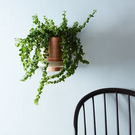 A Nifty, Minimal Planter That Doubles as Wall Art