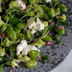 broad bean summer salad