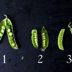 Down & Dirty: Shelling Peas, Snow Peas, Snap Peas