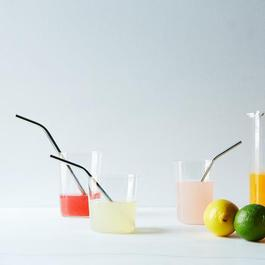 Stainless Steel Straws (Set of 10)