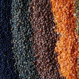 22a608ae 9725 4245 b32b 6c2da3baeddc  2016 0315 guide on how to use different lentils linda xiao 075