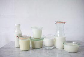 F2a61cb5 b464 48d5 ba5d eadd6ef8af93  milk 8 1