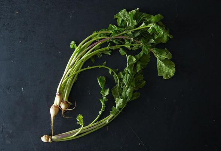 Turnip Greens: They're Tops!