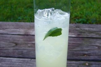 14cd1524-ce45-4524-9415-cd0ef63eb35e.thai_ginger_lime_cooler