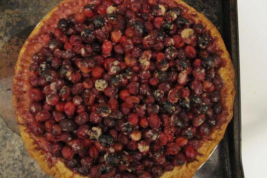 Cranberry Hazelnut Pie