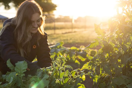 How Hunting My Own Food Taught Me to Cook Mindfully