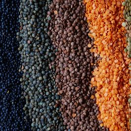 865c02c6 30f2 4971 bf82 426efe60ed2f  2016 0315 guide on how to use different lentils linda xiao 075