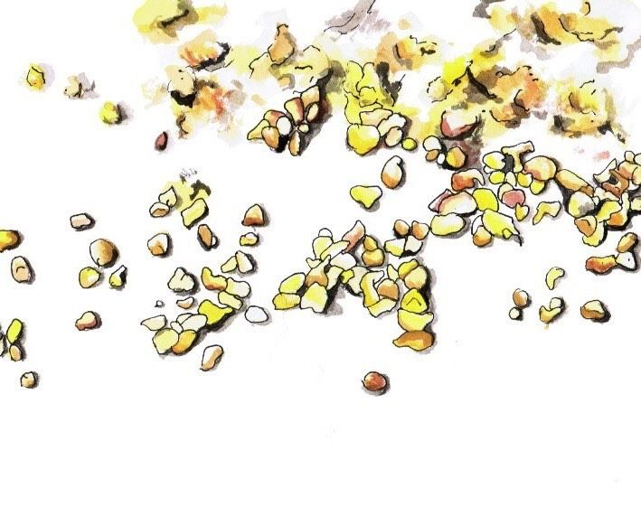 Bee pollen doesn't come cheap.