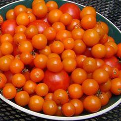 Kick-Ass Tomato Salad