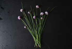 All About Chives and Chive Blossoms