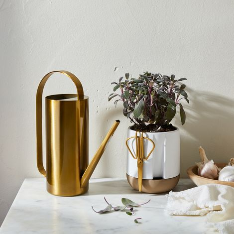 Self-Watering Planter and Brass Watering Can
