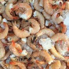 Go to Sarasota for the Sunshine, Stay for the Shrimp