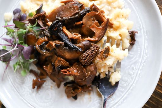 Mascarpone Risotto with Stewed Wild Mushrooms