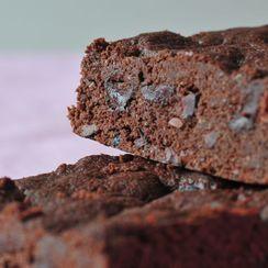 Chocolate cocoa nib shortbread