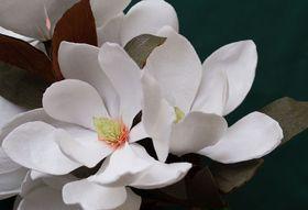 A1131dca 03e3 48a3 90e7 d386acae0e39  flowersmith magnolia grandiflora arrangement p31 part 2