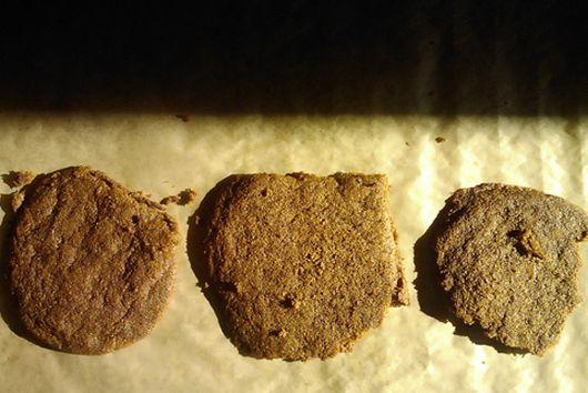Molasses Cookies at Midnight