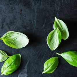 How to Chiffonade Basil (or Any Leafy Herb)