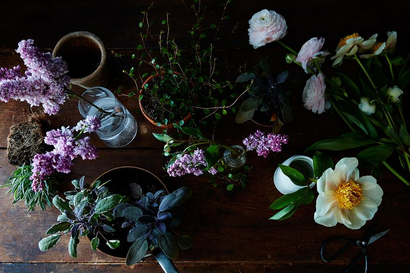 Mugs, herbs, pint glasses, and flowers can become much more than the sum of their parts.